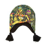 Boys (4-7) Mutant Ninja Turtles Peruvian Beanie , Green