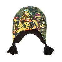 Boys (4-7) Mutant Ninja Turtles Peruvian Beanie , Green