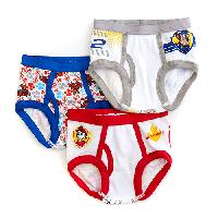 Toddler Boy Nickelodeon 3pc. Paw Patrol Underwear 2T-3T, White