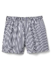 Gap Blue Print Boxers - Blue stripe
