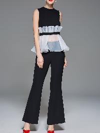 Contrast Organza Pleated Sheer Top With Pants